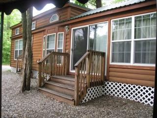 Luxury Lodge near Six Flags Jackson NJ - Cream Ridge vacation rentals