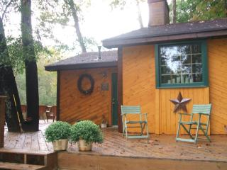 Nice Cabin with Deck and A/C - Dahlonega vacation rentals