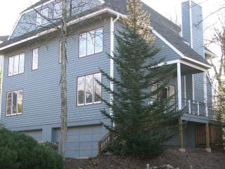 Beautiful Home and Best Value at Wintergreen - Roseland vacation rentals
