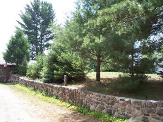 Stonewall Hideaway on Grand Portage Lake in Mercer - Mercer vacation rentals