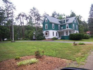 9 Bedroom Waterfront on Pristine Lake Christopher - Woodstock vacation rentals