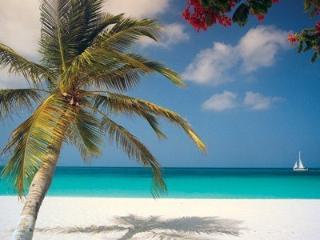 2 bedroom Condo with Internet Access in Eagle Beach - Eagle Beach vacation rentals
