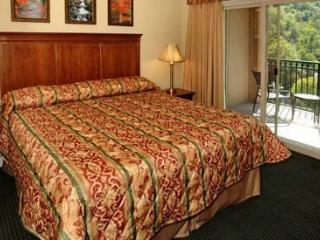 Very luxurious condos directly on the Parkway - Gatlinburg vacation rentals