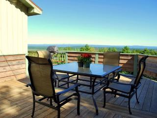 Saugerties, Catskills, HOT TUB,,Woodstock,HUNTER - Saugerties vacation rentals