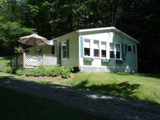 Beautiful Cottage with Deck and Television - Elmore vacation rentals