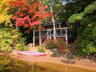 lakeside cottage in quiet setting on lovely lake - Northwood vacation rentals