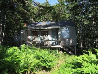 Waterfront cottage on quiet side of Mt. Desert Is. - DownEast and Acadia Maine vacation rentals