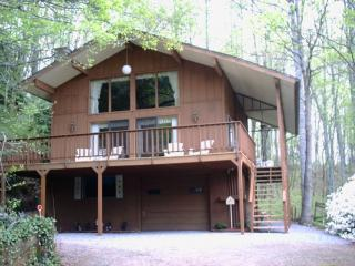 Beautiful Chalet in the Smoky Mountains! - Franklin vacation rentals