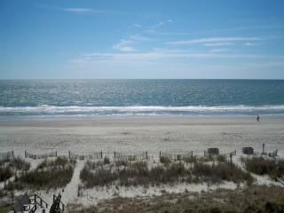 Luxury 5 Bedroom/4 Bath  Oceanfront Penthouse - Surfside Beach vacation rentals