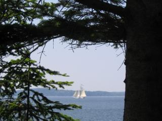 Waterfront on Penobscot Bay! Amazing Sunsets - Brooksville vacation rentals
