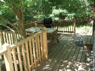 Cozy Cabin with Deck and Internet Access - Mount Tremper vacation rentals