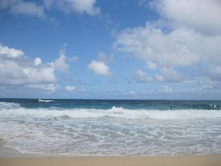 Waikiki - Minutes from beach upto 6 people - Honolulu vacation rentals
