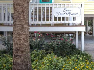 SEAS THE MOMENT -   NEAR OCEAN!  ICW  F/PIER&PARK! - Oak Island vacation rentals