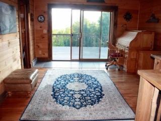 Lexington Vacation Rental house - Prattsville vacation rentals