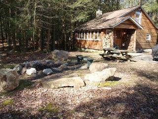 Secluded Log Cabin - Saylorsburg vacation rentals