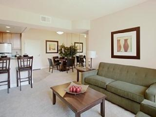 Lake and City View Condo in Downtown Area - Chicago vacation rentals
