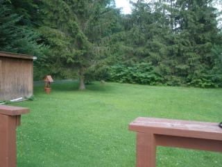 Perfect House with Deck and Central Heating - Big Indian vacation rentals
