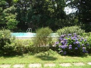 Pool, downtown Falmouth, Wifi, A/C, ping pong! - Falmouth vacation rentals