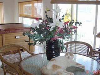 Dreamy Paradise Vacation overlooking Hampton Beach - North Hampton vacation rentals