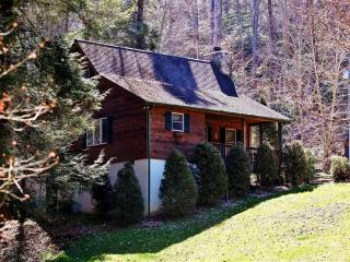 'Creek Melody' Wonderfully Rustic 2BR + Loft Valle Crucis Cabin w/Private Hot Tub, Wifi & Beautiful Views - Near Mast General Store, Boone, Sugar Mountain & More! - Vilas vacation rentals