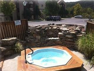 Outstanding Branson Luxury Lake View Condo - Branson vacation rentals