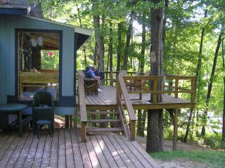 Michigan lakefront vacation home sleeps 12 - LeRoy vacation rentals