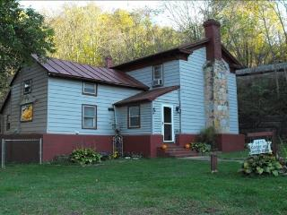 Beautiful House with Deck and Internet Access - Shenandoah vacation rentals
