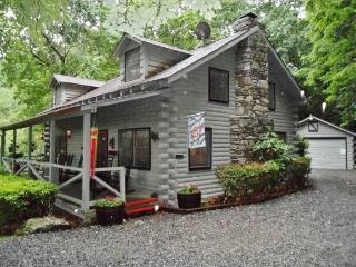 Cozy & Secluded 3BR Maggie Valley Cabin on 4 Acres w/Wifi, Fireplace, & Beautiful Mountain Views - Minutes from Skiing at Cataloochee Resort! - Maggie Valley vacation rentals