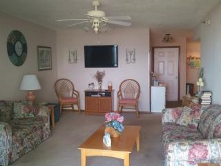 DOPHINS PLAY--Beautiful Ocean Front Condo - North Topsail Beach vacation rentals
