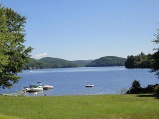 Beautiful Adirondack Contemporary - Severance vacation rentals