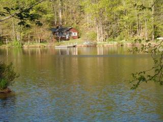 Lakefront, private dock, fish, swim, boat availabl - Kinnelon vacation rentals