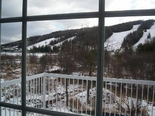 Fabulous mountain view at steps of Mont-Saint-Sauv - Piedmont vacation rentals
