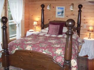 Beautiful 3 bedroom Cabin in Port Townsend with Deck - Port Townsend vacation rentals