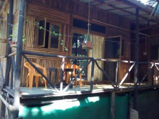 Nice Cottage with Shared Outdoor Pool and Parking - Dandeli vacation rentals