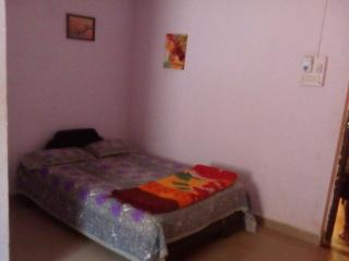 Bright 6 bedroom Villa in Dandeli - Dandeli vacation rentals