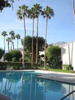 Casa Verde Pool - Movie Site Location - Palm Springs - rentals