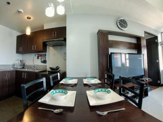 Perfect Condo with Internet Access and A/C - San Jose vacation rentals