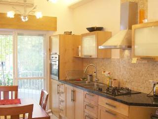 Gan Rechavya Green Fields Kosher Luxury Apartment - Jerusalem vacation rentals