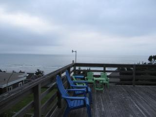 Gertie's Cabin with unobstructed ocean views! - Tillamook vacation rentals