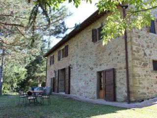 Fully Renovated Tuscan Villa With Pool & Wifi - Anghiari vacation rentals