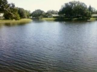 Lake View Villa~Nicely Furnished~Tranquil Spot!!! - Image 1 - Venice - rentals