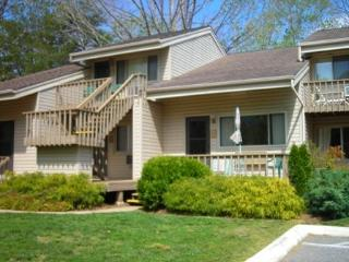 Wonderful Condo with Deck and Dishwasher - Lake Lure vacation rentals