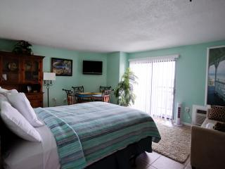 GREAT FALL / WINTER RATES!!! OCEAN FRONT RESORT!! - Myrtle Beach vacation rentals