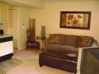 1 Bdrm, Condo, Walk in,mini golf,wifi, Indoor Pool - Branson vacation rentals