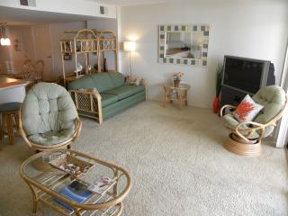 2 bedroom Condo with Dishwasher in Ocean City - Ocean City vacation rentals