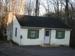 Cozy Cabin, propety adjoining Burr Oak State Park - Glouster vacation rentals