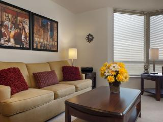 DC Area - Arlington 2 Bedroom / 2 Bath Apartment - Arlington vacation rentals