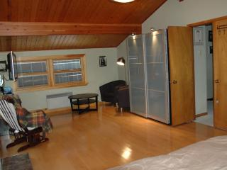 St. John's House- Feel like the country in the middle of the city! - Saint John's vacation rentals