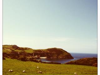 3 Bed Chalet Lodge Sleeps 6 Stunning Sea Views - Cemaes Bay vacation rentals