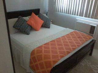 Sea Residences Condo For Rent Mall of Asia Manila - Manila vacation rentals
